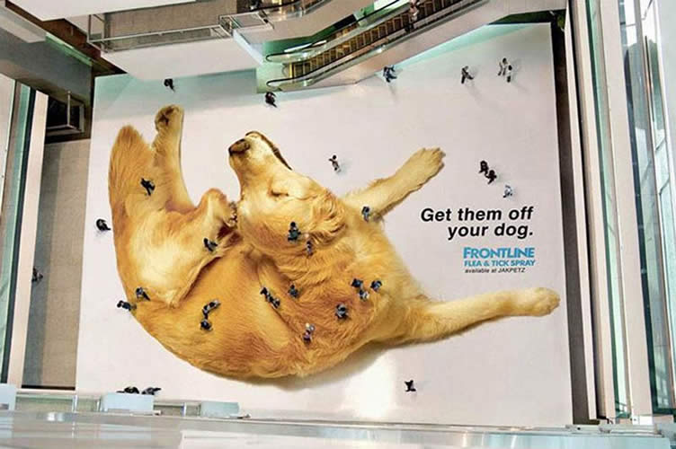 Imagem do marketing de guerrilha da Frontline para exemplificar de como a imobiliária pode captar clientes.