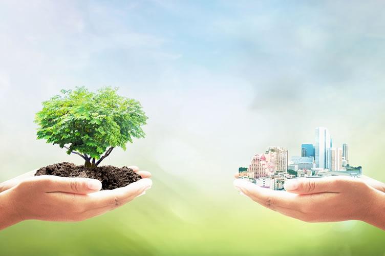 duas mãos, uma de cada lado. Na esquerda ela segura uma árvore e na direita uma cidade, com prédios e tudo mais. O início para vender imóveis ecologicamente corretos é conciliar os dois lados.