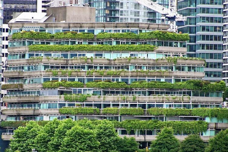 Condominio sustentável. Como vender imóveis ecologicamente corretos em um condominio.